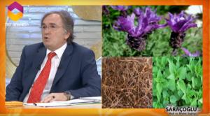 Yumuşak doku romatizması bitkisel tedavisi