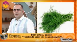 Tiroidde nodülün bitkisel tedavisi için öneriler