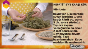 Hepatit B bitkisel tedavi