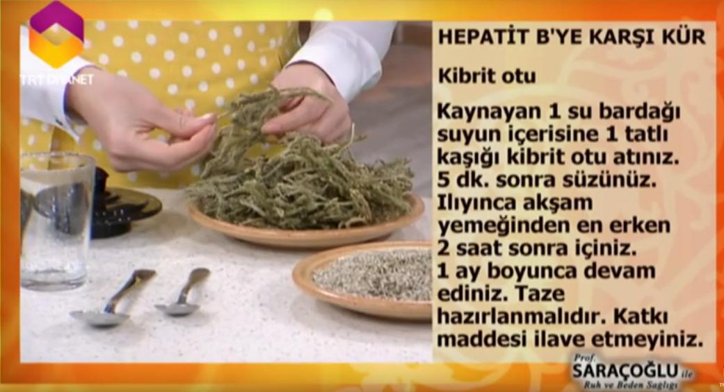 hepatit b ibrahim saraçoğlu