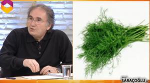 Fibrokist bitkisel tedavi kürü