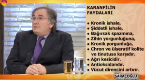 ibrahim saraçoğlu karanfil kürü