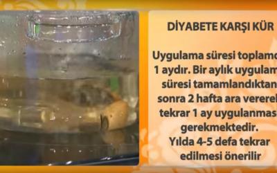 Diyabet kürü