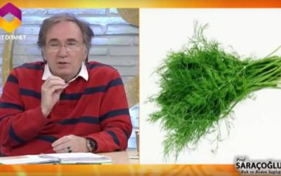 İştahı kesen bitkiler