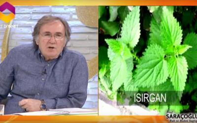 Sigara içen akciğer kanseri hastaları için bitkisel kürler