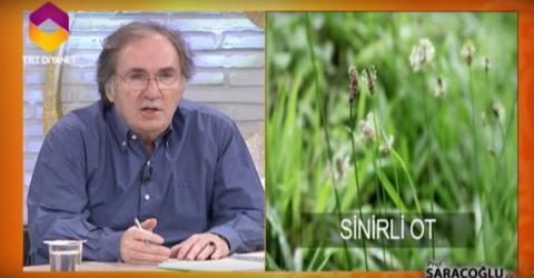Astıma iyi gelen şifalı bitkileri ibrahim Saraçoğlu açıkladı