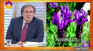 Hipofiz adenomu bitkisel tedavisi